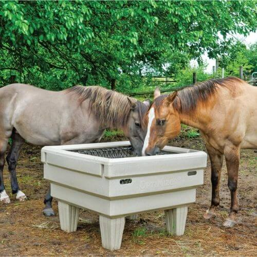 Two horses eating out of an OptiMizer