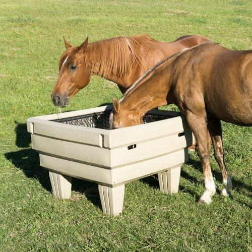 Two horses eating out an OptiMizer