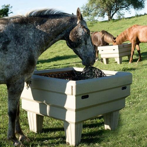 Horse eating out an OptiMizer